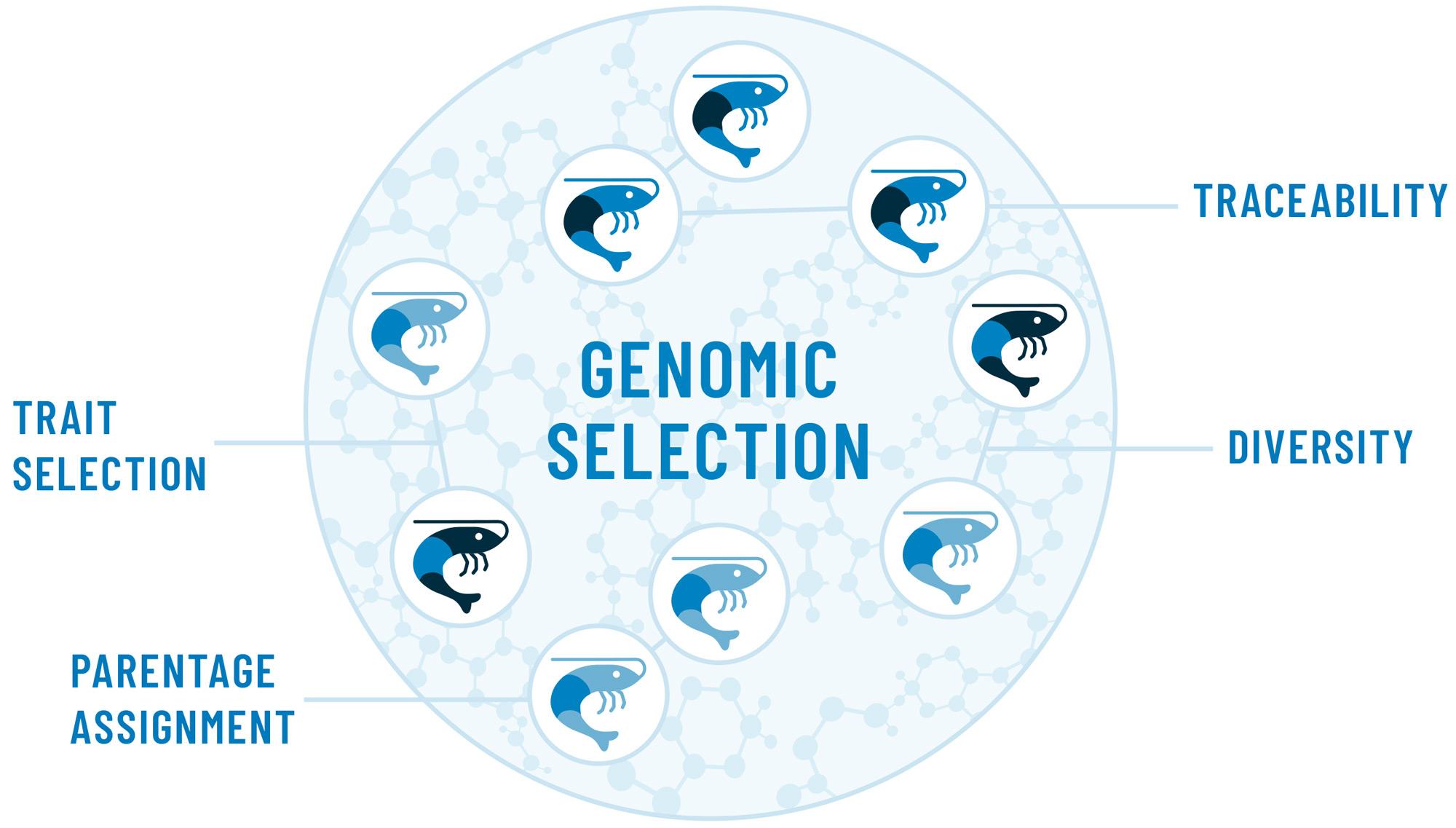 CAT-Genomic-Graphic2